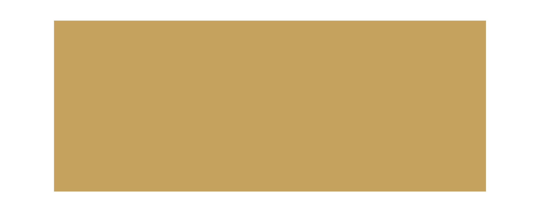 lotus cruises