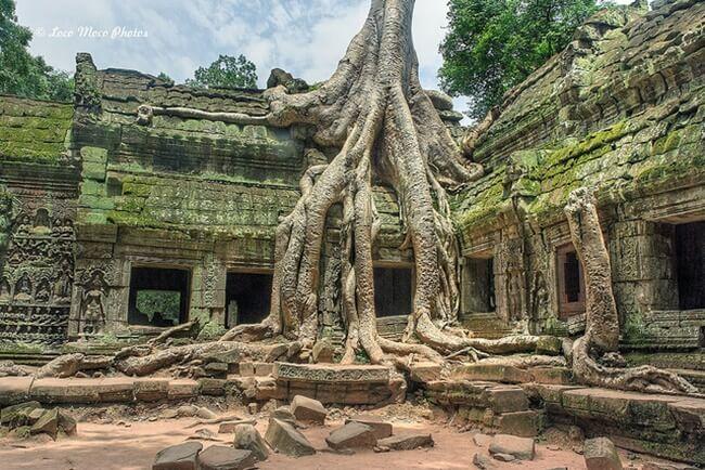 Angkor Complex 4