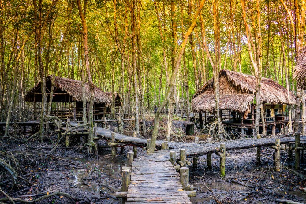 day trips from ho chi minh 11