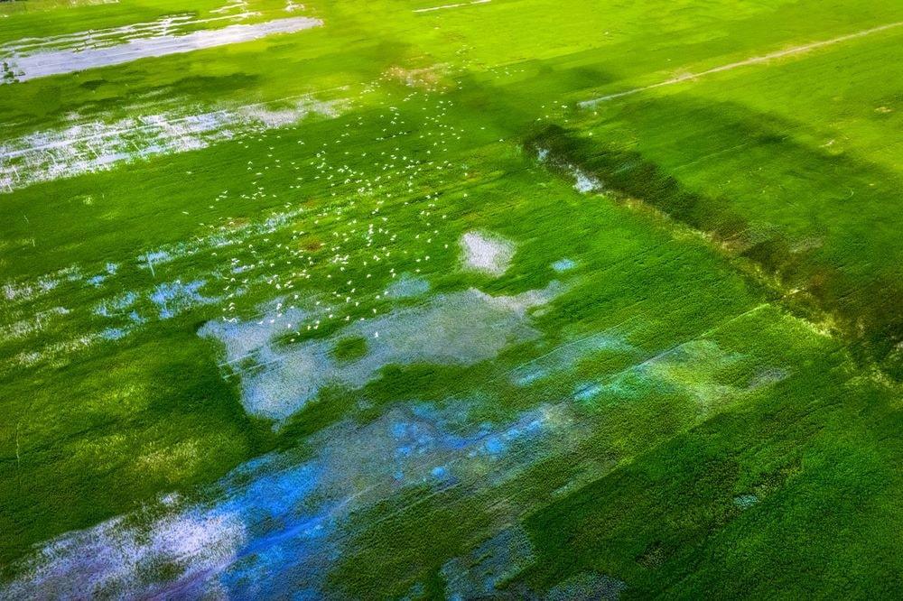 mekong delta vietnam 12